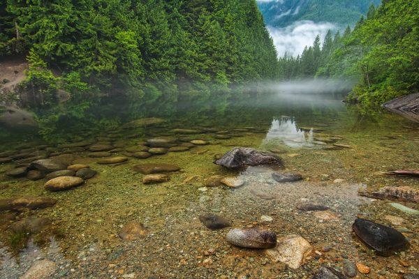 A preservação da água e o consumo consciente