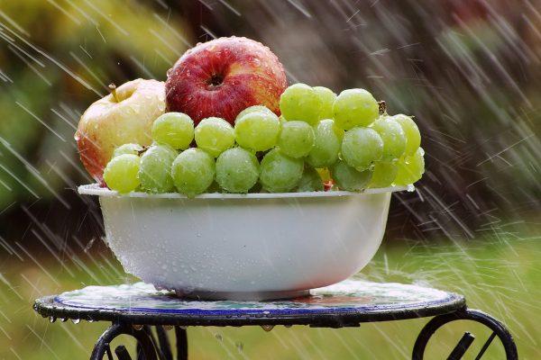 Qual a importância da água no organismo das pessoas