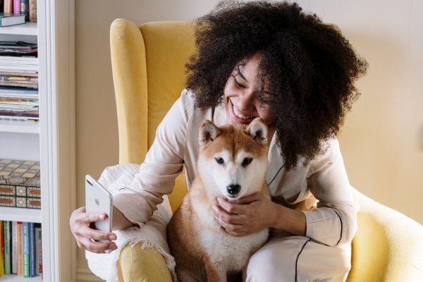 Cuidados essenciais para a saúde do seu pet