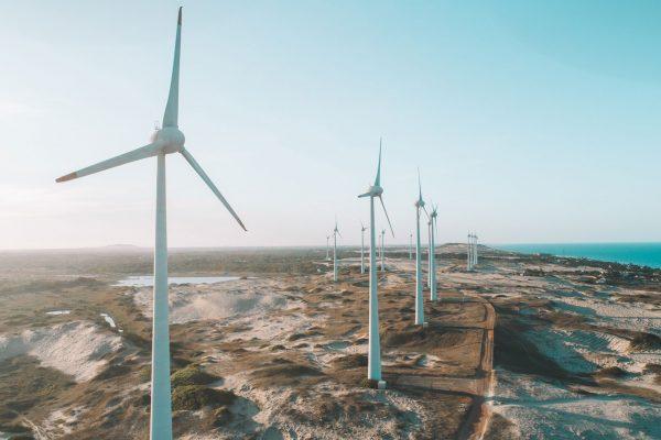 Sustentabilidade: por que ela é tão importante?