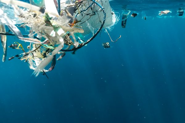 Você sabia que o Brasil recicla 2% do plástico consumido!